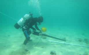 2017年 平戸南ケーブル調査、佐渡島海象計移設、御前崎ケーブル布設